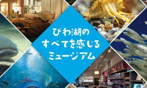 琵琶湖博物館トップ